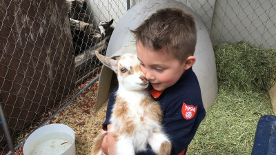 We love animals! Anytime we see one we have to stop and per it if we can. Banks asks a lot of questions about different animals and remembers quite a bit. He says he want to be a zoo keeper when he grows up.